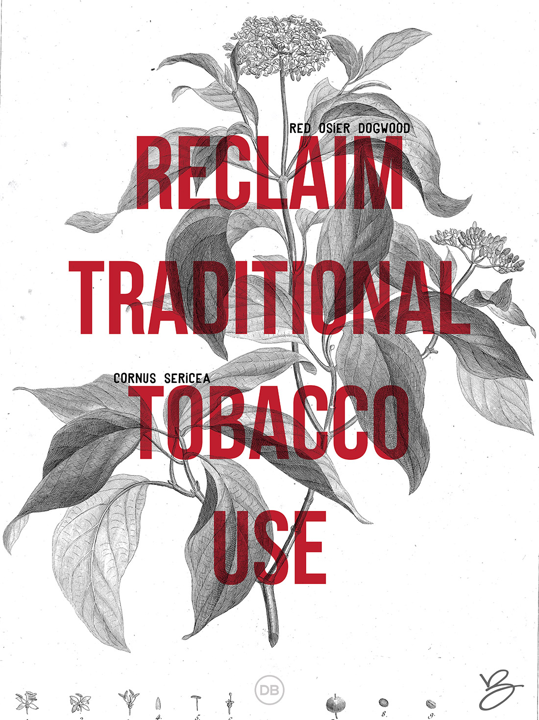 David Bernie Indian Country 52 1 Reclaim Traditional Tobacco Use